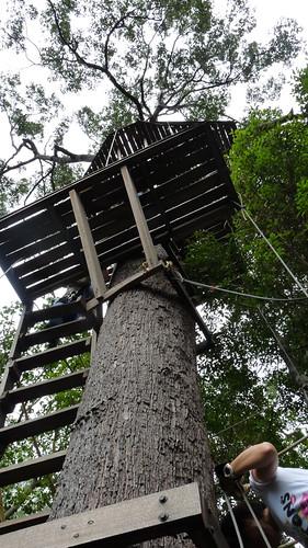 Koh Samui Canopy Adventures サムイ島キャノピーアドベンチャー10