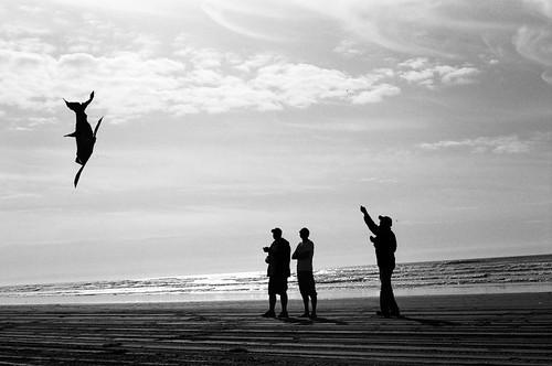 Men and Kites