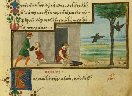 Monedula (Graculus) Liberata