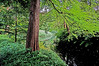 Tiergarten (Corner of a Life) Tags: hdr besthdr hdraward