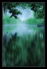 Reflets (pasc007) Tags: water eau vert reflet reflexion passiondclic