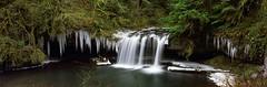 Upper Butte creek falls, winter 2009 (Matt Abinante) Tags: oregon fujig617 upperbuttecreekfalls