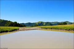 prati di Sara (L *) Tags: landscape lago sara acqua montagna soe d60 prati blueribbonwinner nikond60 diamondclassphotographer flickrdiamond pratidisara goldstaraward rubyphotographer