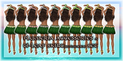 * Charmed * Hula Plumeria Accessories & Ti-Leaf Skirt Set 01