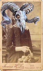 james h. lee (kitty valentine) Tags: london girl skull sheep gothic victorian horns goat mementomori cartedevisite macabre ram steampunk neovictorian victoriandress cabinetphotograph