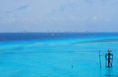 Estrecho Mujeres (Mr. Theklan) Tags: blue azul mexico islamujeres caribe urdin ltytr1