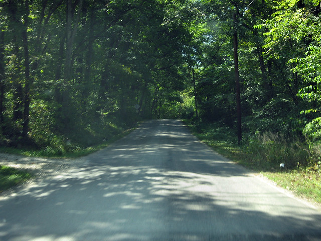 Spout Springs Road