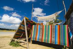 tierra de la hamaca (prex79) Tags: mexico colours coba tokina terra 1224 2010 hamaca tierra messico quintanaroo amaca