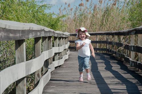 Everglades-22