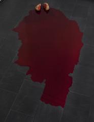 CA2M - Wilfredo Prieto - Piedra con sangre 2011