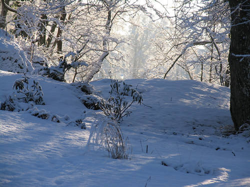 vinter 106