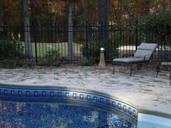 Pool Landscaping - Pine Needles