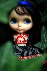 The Garden Princess