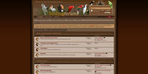 birdingforums