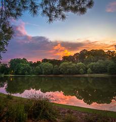Martin Lake sunset - 2017-06-30_09 (Paul and Nalva) Tags: nx500 samsungnx500 martinslanding roswellga 2017rpsjulylandscape flp