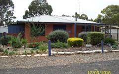 13 Emu Springs Road, Tintinara SA