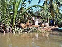 maison sur les rives du Mkong au Vitnam (pontfire) Tags: voyage trip travel people holiday river boat asia vietnam asie mekong