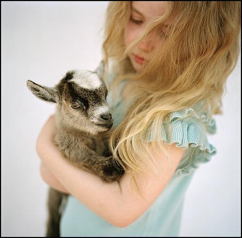 girl holding a goat, blogmaya21
