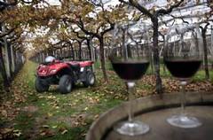 Familia Zuccardi: En cuatriciclos por los viñedos