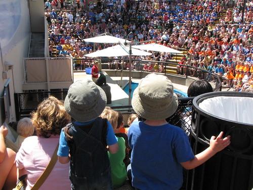 children in big crowds momspark.net