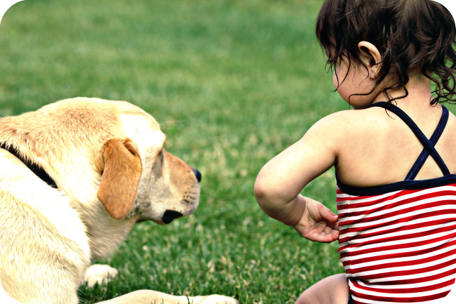 IMG_3211BLOG IHEARTFACES pets