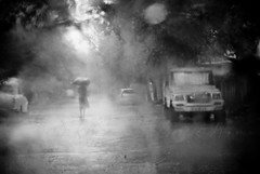 under the weather.. (knowsnotmuch) Tags: trees bw rain lady umbrella 50mm jeep laila cyclone oof throughthewindshield