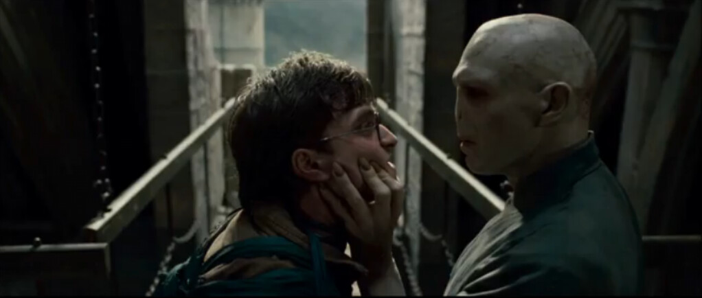 Harry Potter and the Deathly Hallows Harry Vs Voldemort