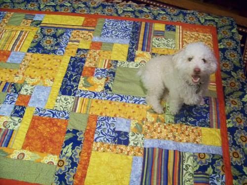 CJ's quilt