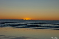 La Timidez del Sol (FlavioSpezia) Tags: ocean sea sky costa sun reflection sol beach skyline clouds sunrise coast mar town nikon pueblo playa amanecer cielo nubes reflejo horizonte oceano golondrinas orilla sanbernardo terns costaatlantica d40