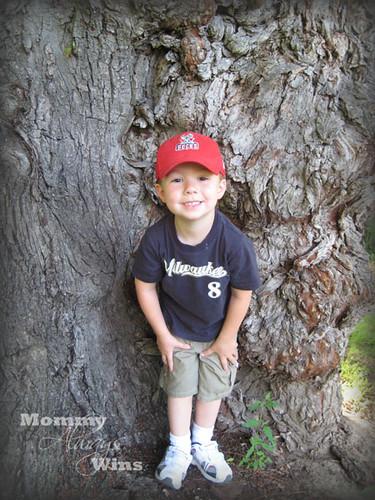 tree_will
