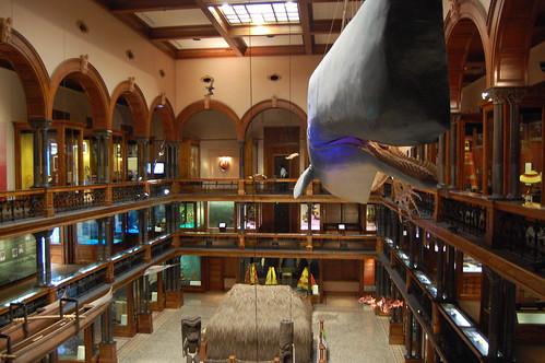 museum oahu bishop