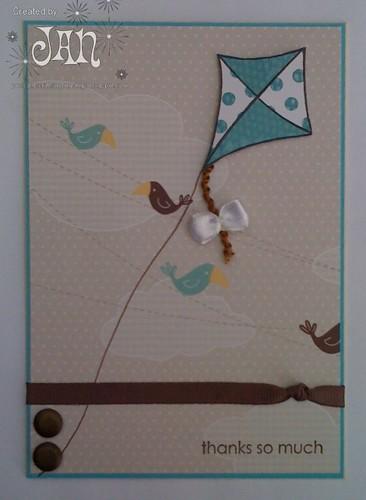 Birds & Kite