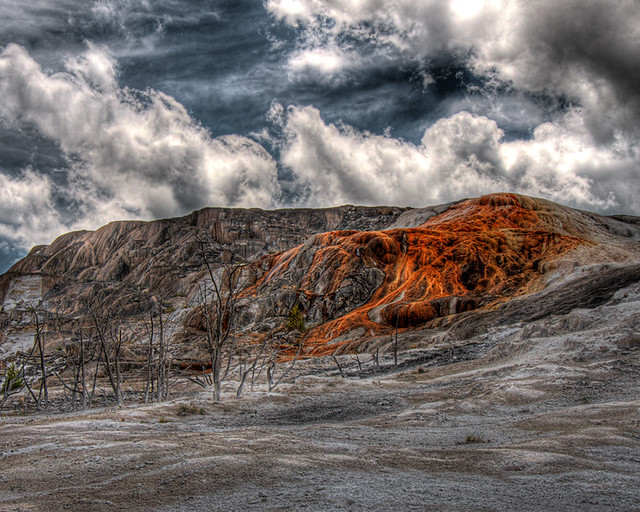 Mammoth Hot Springs, YNP