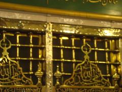 Prophet Muhammad's Tomb, Madinah (Ammer Amin) Tags: adam gabriel angel paradise muslim islam abraham mosque mohammed madina saudi arabia messenger muslims ibrahim haram prophet mohammad mecca masjid allah umrah islamic aisha makkah hajj pilgrims prophets muhammed madinah kaaba rawdah marwah zamzam thegreatmosque jannat haramsharif raudah