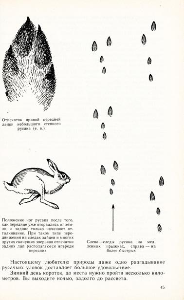 sputnik_page_003