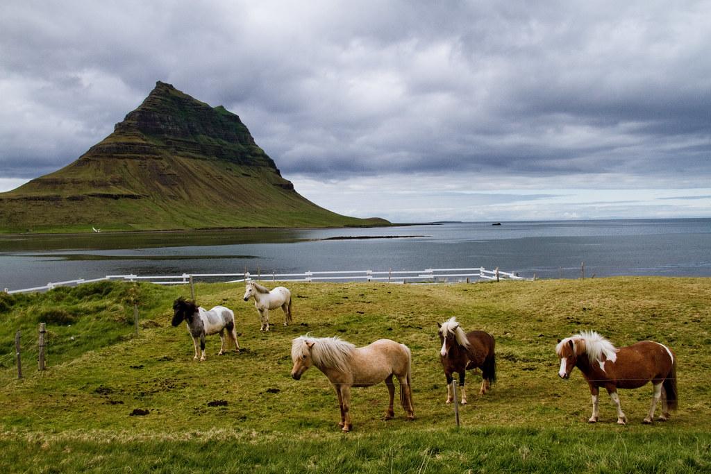 """El pequeño pueblo de Grundarfjörður (""""Fiordo de Grundar"""") está situado en el norte de la península de Snæfellsnes, en el oeste de Islandia."""