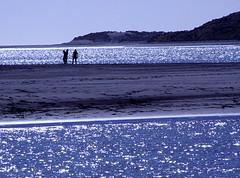Raglan Bay, New Zealand (amber654) Tags: ocean travel sunset sea newzealand water silhouette bay sundown dusk sparkle national waikato northisland raglan geographic nationalgeographic worldland