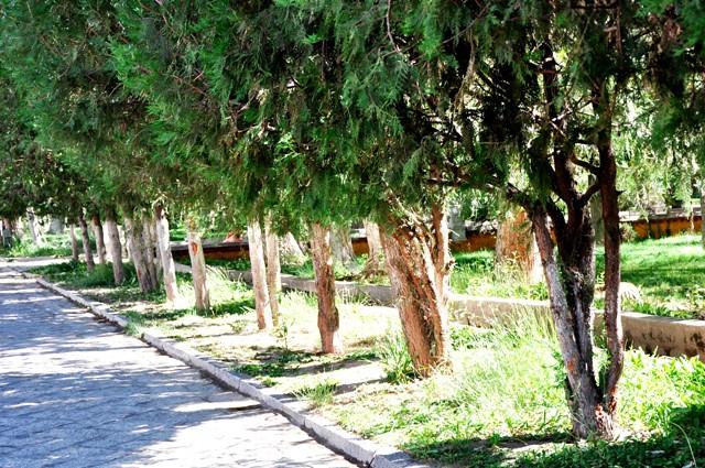 Tb jun18-2010 (614) summer palace