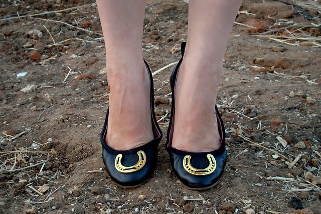 Horse shoe shoes