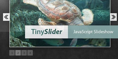 tinyslider.jpg