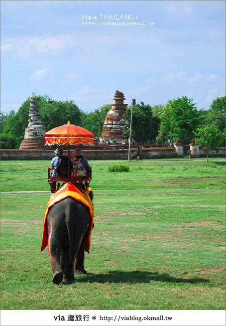 【泰國旅遊】2010‧泰輕鬆~Via帶你玩泰國曼谷、普吉島!11