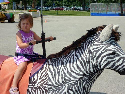 Ritt auf dem Zebra