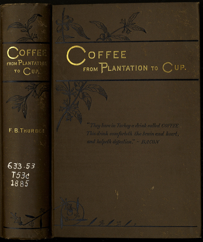 Coffee: From Plantation to Cup