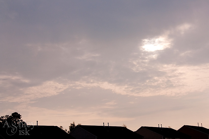 Sky Watch 072310