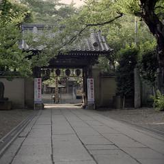 Nakano humid #4 (haribote) Tags: araiyakushi bronica fujifilm nakano pro400h ps110mmf4macro sq zenzabronica zenzanon alley cityscape culture people temple nakanoku tokyo japan