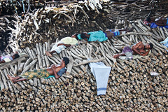 I find pleasure in thorns (Kamrul - Hasan) Tags: street sleeping people lifestyle rest dhaka 2009 bangladesh