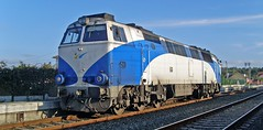 Camino de Ferrol (Nexiosferrol) Tags: madrid railroad train gm coruña rail 333 estrella rambo ferrol atlantico renfe generalmotors grandeslineas nohab aislada 333104 betanzosinfesta