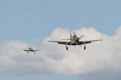 P-51D Mustang and Sea Fury landing (Merlin_1) Tags: fighter airshow ww2 duxford cambridgeshire hawker worldwar2 rn p51d imperialwarmuseum royalnavy iwm cambs northamerican seafury flyinglegends canonef100400f4556lisusm tf51 missvelma