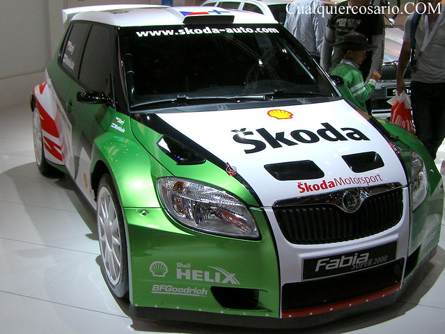 Skoda Rally