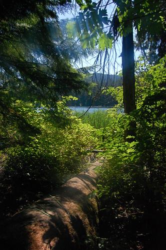 BC - White Pine Beach Park (6)